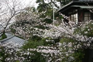 くらしきていえんりょかん びんごや 倉敷庭園旅館備後屋