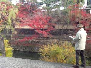 真っ盛り。倉敷美観地区の紅葉