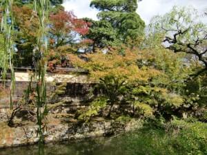 紅葉始まる倉敷美観地区