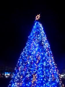 クリスマスツリーのイルミネーションが始まりました