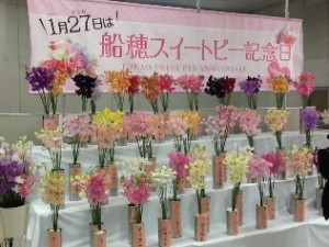 1月27日は船穂スイートピー記念日。