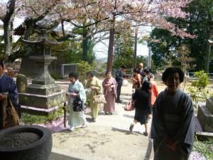 桜の舞い散る円通寺で、良寛茶会が開催されました
