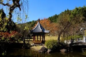 真備公園の紅葉 & 竹工芸