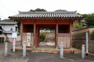 春の大祭 花の四日  宝島寺  in  2016