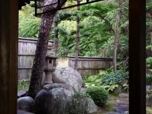 ⑫青々と清々しいお庭