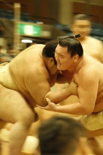 大相撲巡業~倉敷場所①~2016