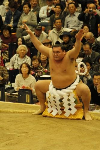 大相撲巡業~倉敷場所②~2016