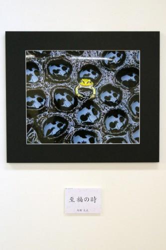 第8回写友くらしき小町写真展~2017~