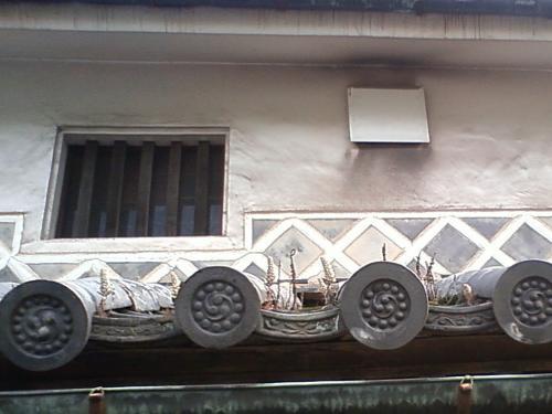 倉敷美観地区で「つめれんげ」の花を見た。