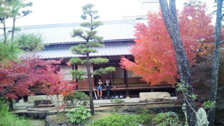倉敷美観地区の紅葉