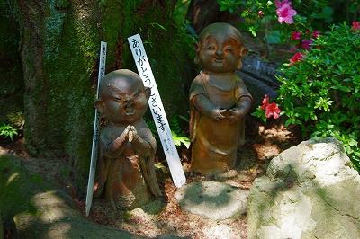 6月の円通寺・ゆったりとしていますよ。