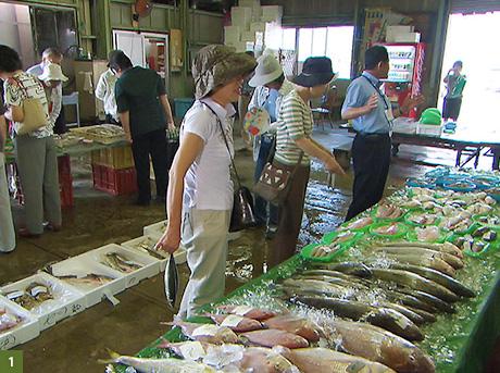 瀬戸内海の新鮮な魚介が集まる魚市場