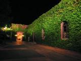 美観地区 夜間景観照明の写真02