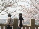 箆取神社の写真02