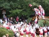 鴻八幡宮の写真03