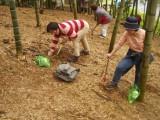 たけのこ掘り体験(倉敷市真備町観光たけのこ園)
