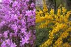 四季折々の花に囲まれて