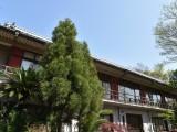 五流尊瀧院の写真02