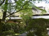 五流尊瀧院の写真03
