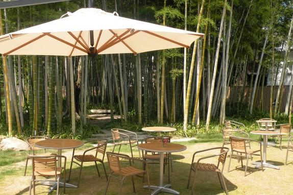 くらしき宵待ちGARDENの竹林散策庭園。野外催事場としても利用可能です。