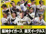 プロ野球公式戦「みんなで行こう!!プロ野球in倉敷」【阪神VS広島】の写真1