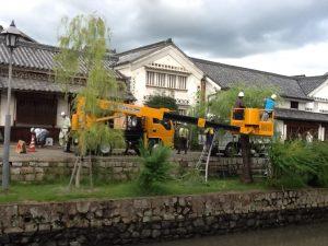 美観地区 倉敷川掃除と柳の剪定