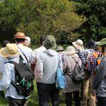 第78回 植物園を楽しむ会「ワレモウコウ咲く秋分を楽しむ」