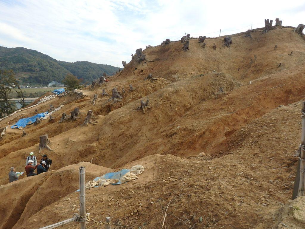 南山城跡の発掘現場説明会があります