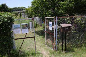 第87回植物園を楽しむ会 「腐草(くちくさ)の季節を楽しむ」