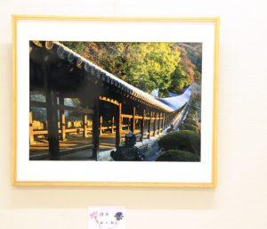 第10回写友天領写真展&瀬戸大橋の見える海
